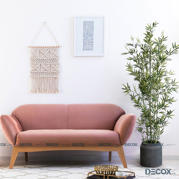 cay-canh-bamboo-cc10-01-decox